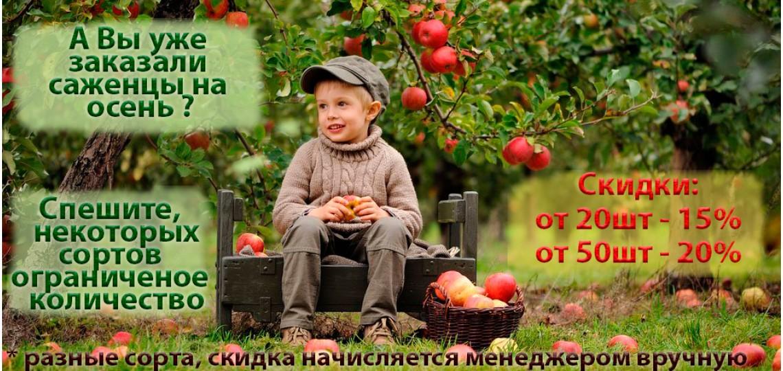 autumn_ru