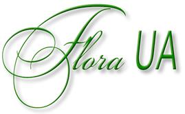 ФЛОРА-UA. ДЕКОРАТИВНІ та ПЛОДОВІ рослин з ВЛАСНОГО РОЗСАДНИКА